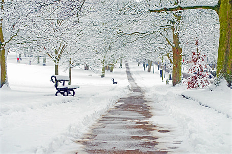 photo of clear path way covered with snow
