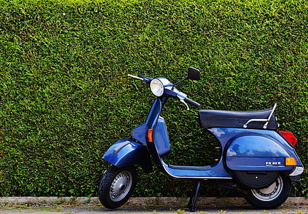 blue and black motor scooter beside hedge