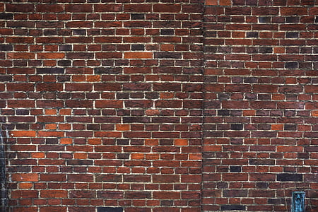 photography of brown wall bricks