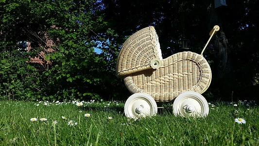 gray woven bassinet on green grass field at daytime