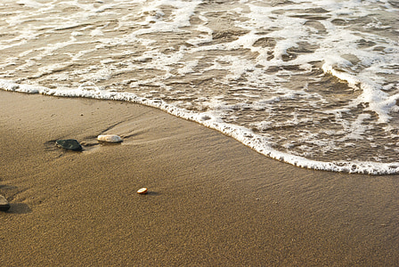 photo of brown sand in seashore