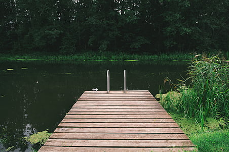 brown wooden jetty facing body of water