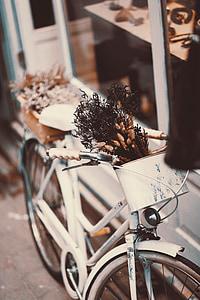 selective focus photo of white beach cruiser bicycle