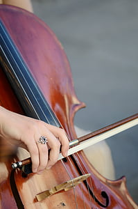 closeup photo of person holding violin and bow