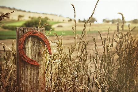 brown metal horse shoe hanging on brown post