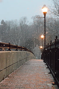 gray and brown concrete footbridge near lighted street posts at snowy day