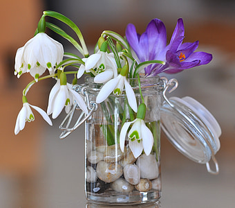 white-and-purple flowers on clear glass vase