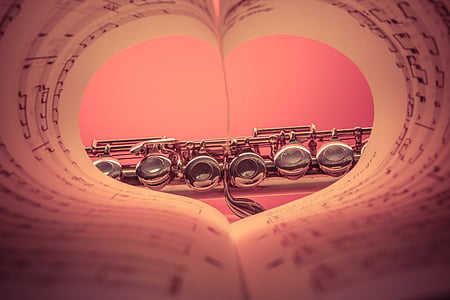 silver-colored clarinet through heart bend book view