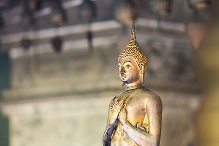 gold-colored buddha figurine