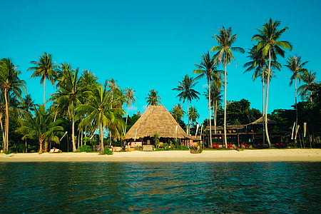landscape photography of brown nipa hut near seashore