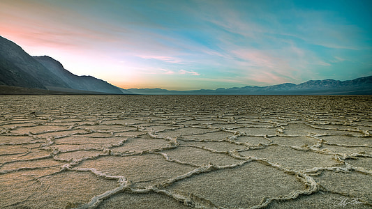 deserted field