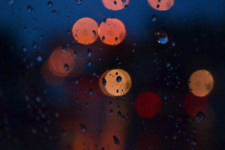 closeup photo of water droplets