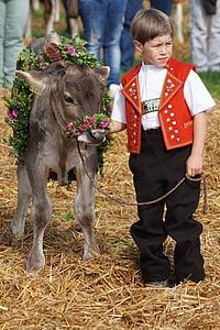 kid beside brown water buffalo
