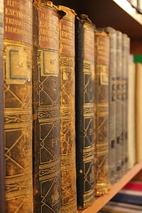 closeup photo of assorted-title books on brown wooden bookshelf