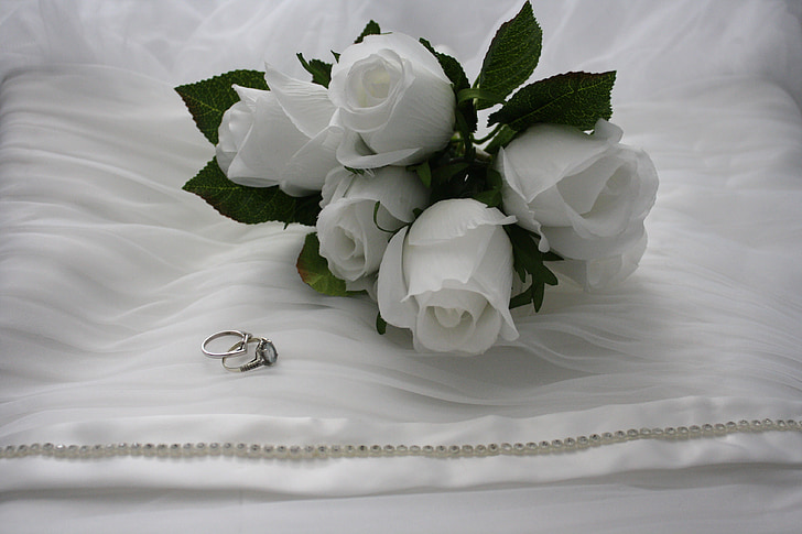 five white rose flowers