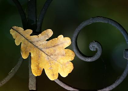 brown leaf near metal bar
