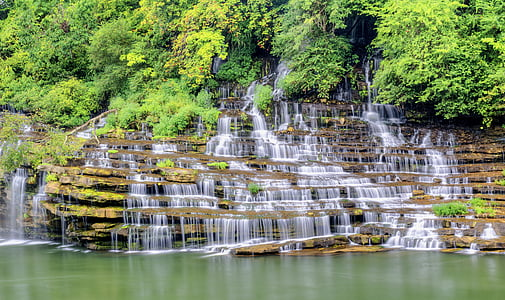 waterfalls and green leafed trees at daytime
