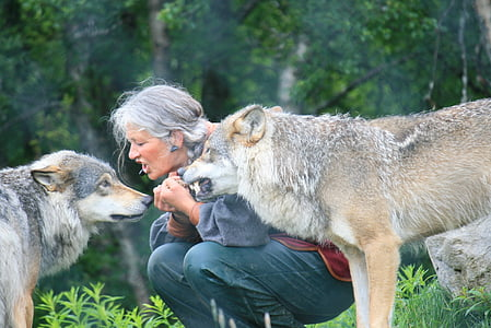 woman wearing gray bottoms sitting beside two wolves