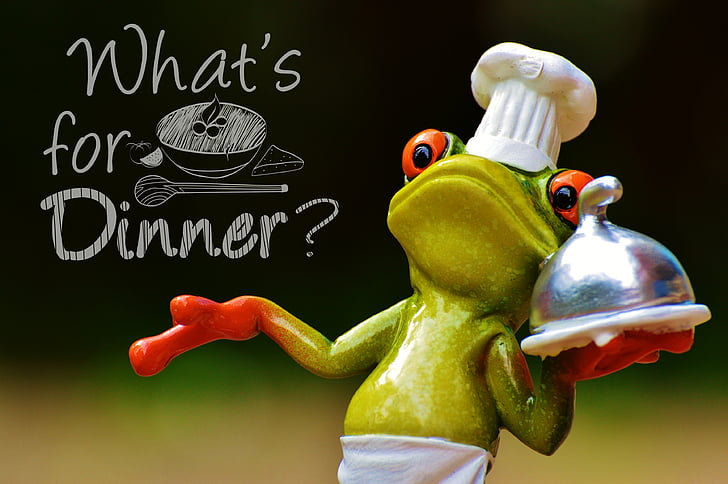 Green And Red Ceramic Chef Frog Decor With Text Overlay