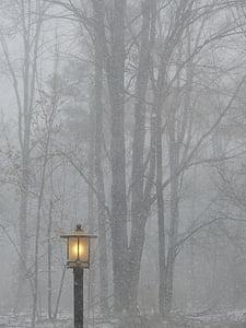 lighted black street light near trees fogs