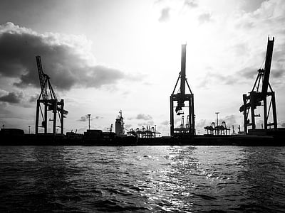 grayscale photography of crane near body of water