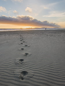 footprints on gray sand during daytime