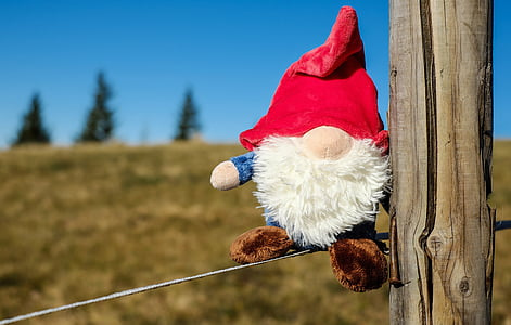 close-up photography of elf plush toy on gray wire