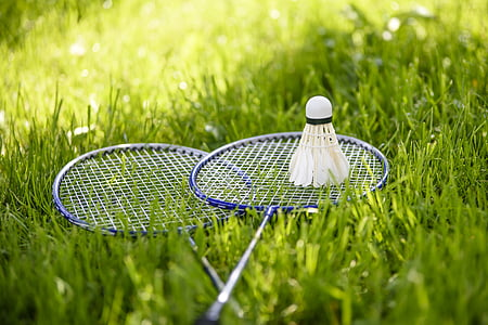 two blue-and-white badminton rackets and shuttlecock on grass