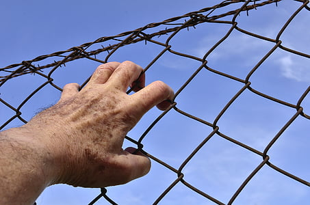 person holding brown metal chain link fence at during daytime