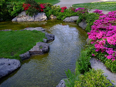 body of water surrounded with purple petaled flowers and grasses