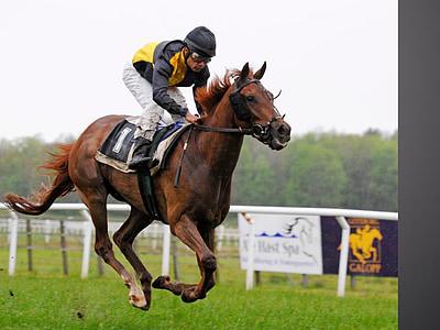 jockey riding brown horse