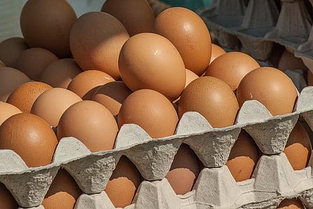 closeup photo of organic eggs