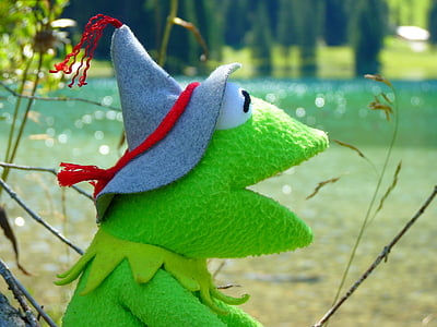 Kermit the Frog photography