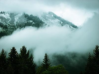 white and grey glacier mountain