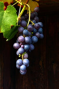 grapes hanging beside wooden surface