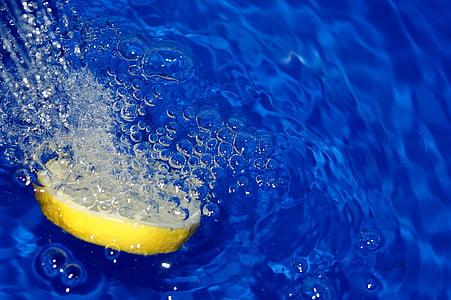 sliced lemon fruit soaked in liquid