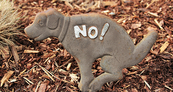 gray dog statuette in top of wood chips at daytime