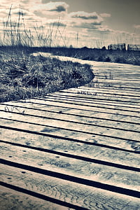 filtered photography of wooden dock overlooking grassy fieldds