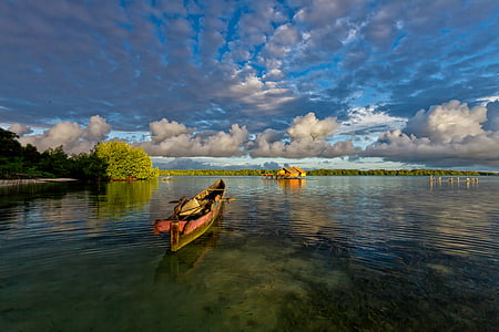 brown canoe on body of water