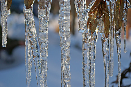 ice, ice age, icicle, winter, cold, snow
