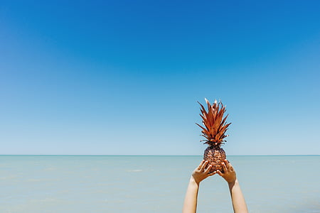 person holding a pineapple on beach