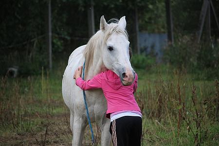 person in pink sweatshirt hugging white horse