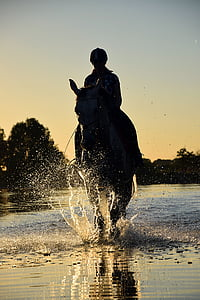 silhouette of person rinding horse