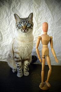 silver tabby cat sitting beside manikin action figure