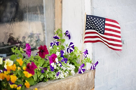 pink and purple petunia flowers and USA flag