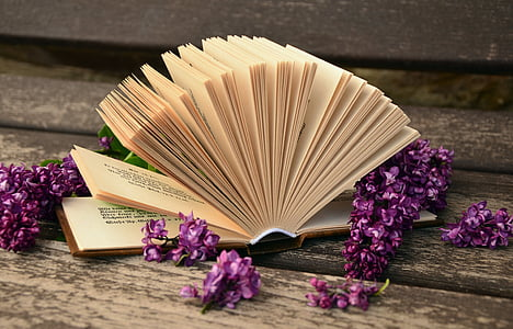book surrounded of purple flowers