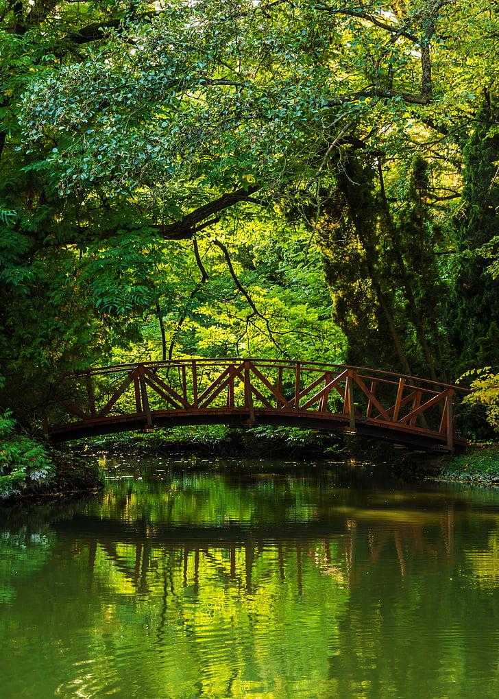 gray bridge under green trees