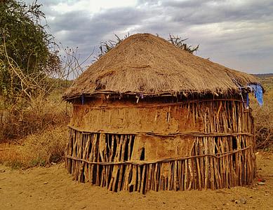 brown nipa hut