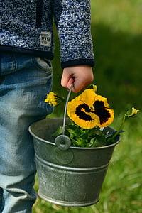 yellow flowers on gray steel bucket
