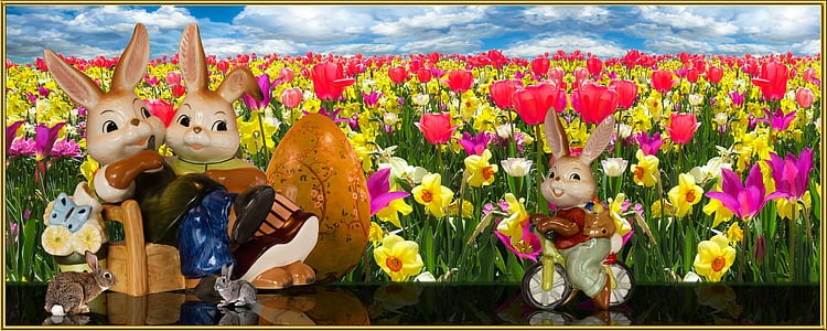 boy rabbit bicycling in front of sitting man and woman rabbits on bench with flower field background